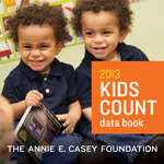 AECF 2013 Data Book